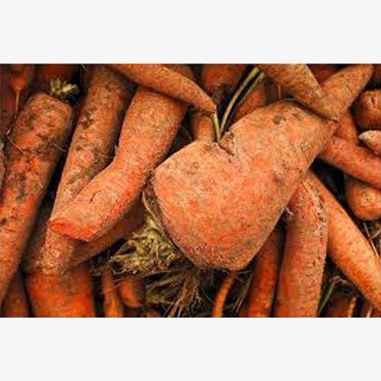 Sac de carottes pour animaux 10kg